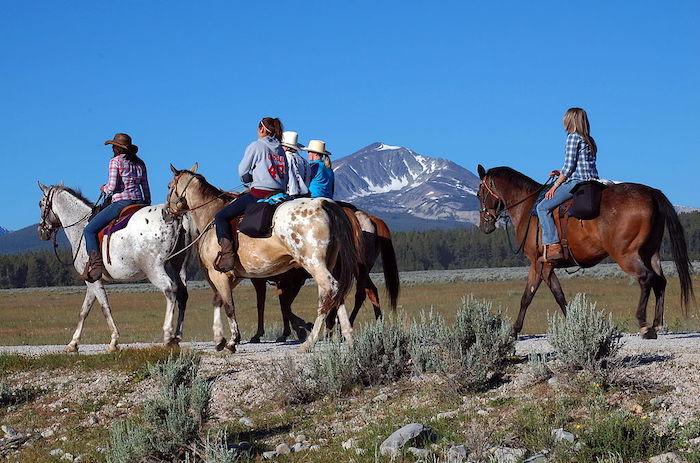 Horseback Riding Tours in Billings