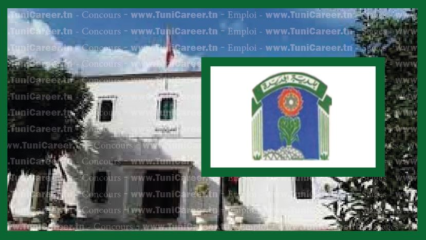 P0241 مناظرة انتداب بلدية الجديدة