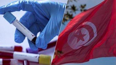 Photo of توزر: 14 إصابة بكورونا وافدة من الجزائر