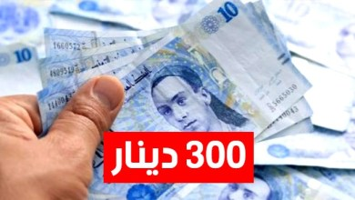 Photo of يهمّ من تمّ قبولهم لتلقي المساعدة الإستثنائيّة المقدّرة بـ300 دينار، وزارة الشؤون الإجتماعيّة تُصدر بلاغًا