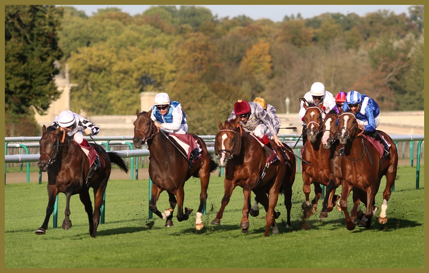 Tareef gewinnt in Chantilly