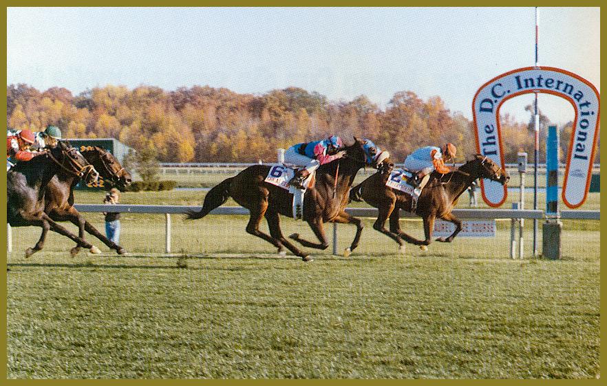 Le Glorieux - Sieger im Washington D.C. International 1987