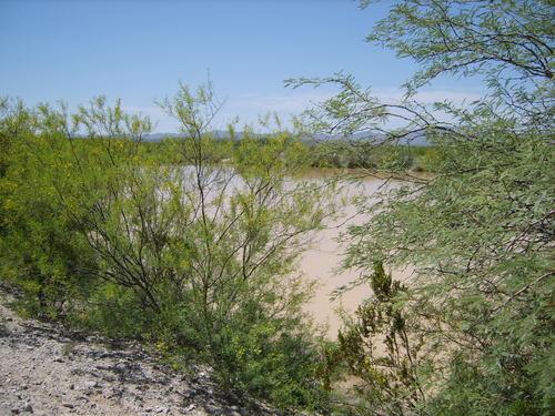 Ejido Bajío de Ahuichila, Coahuila
