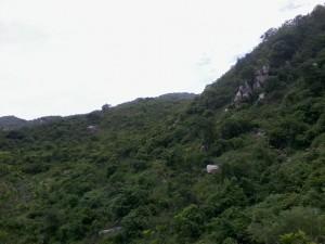 Parque Nacional Alejandro de Humboldt, Guerrero