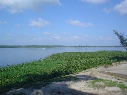 Laguna El Rosario, Tabasco