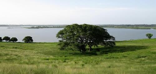 Laguna Nueva Esperanza, Tabasco