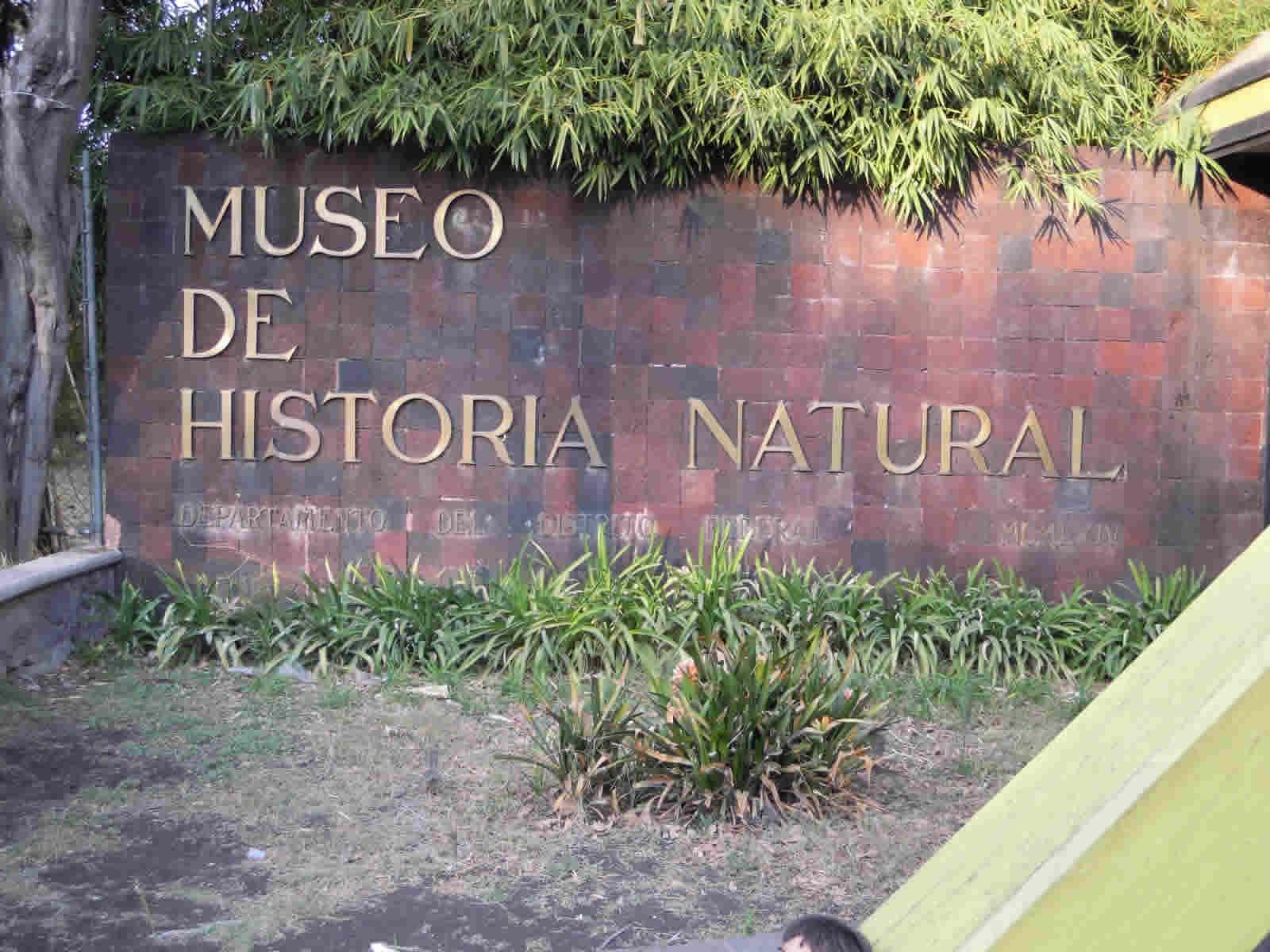 Museo de Historia Natural, Puebla
