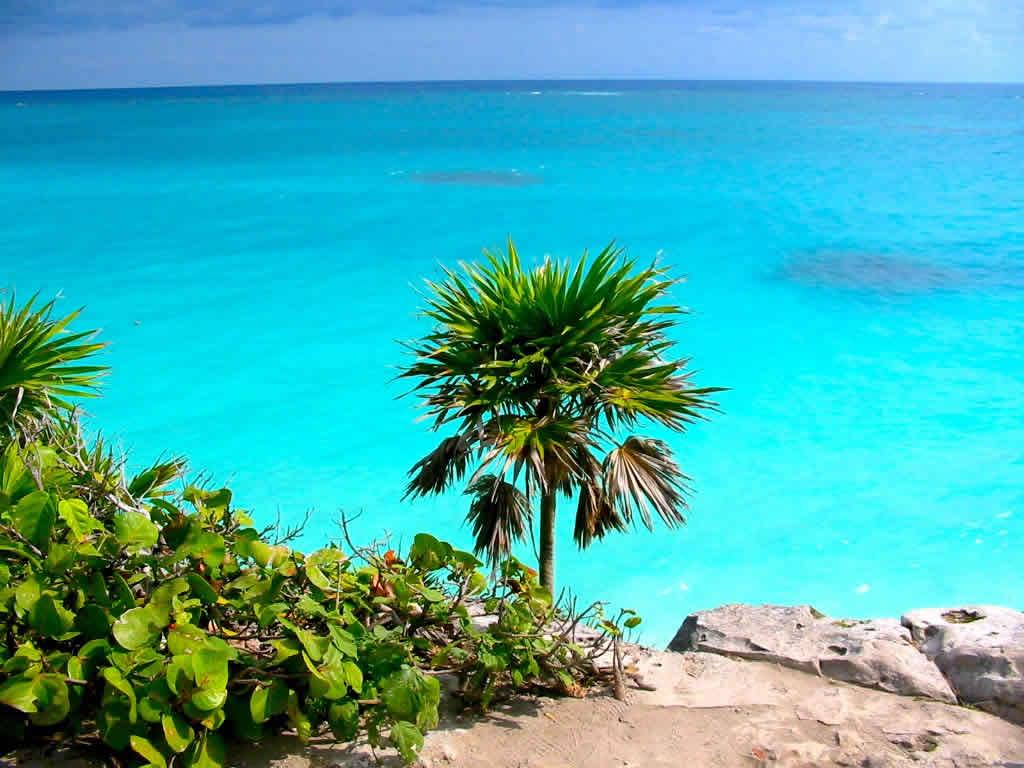 Playas y Arrecifes en Cozumel
