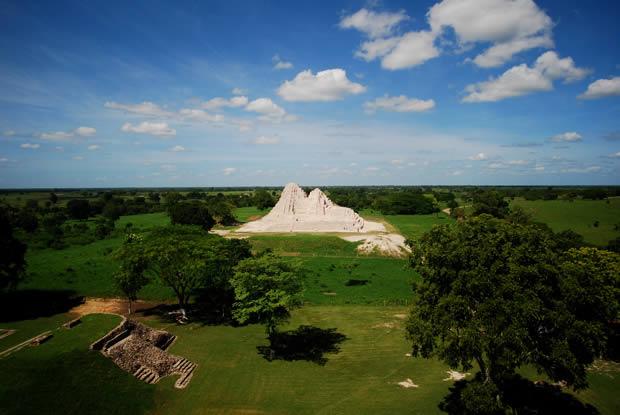 Vegetación Maya