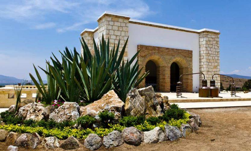 Casa Mezcal Oro de Oaxaca  TuriMexico