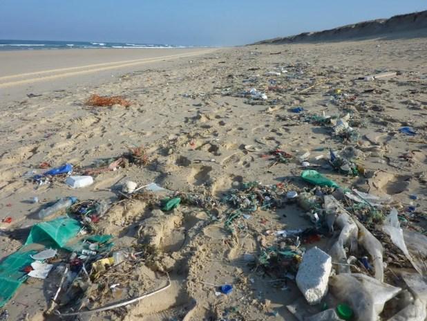 Miljøministeren vil bremse strandsvinene med oplysningskampagne. Der er afsat tre mio. kr. til indsatsen mod marint affald, som er medfinansieret af EU via Den europæiske Hav- og Fiskerifond. Den nye indsats er netop sendt i udbud og forventes at køre i løbet af 2018. (Arkivfoto)