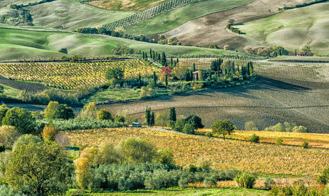 Toscana la genuinit della Valdichiana in agriturismo
