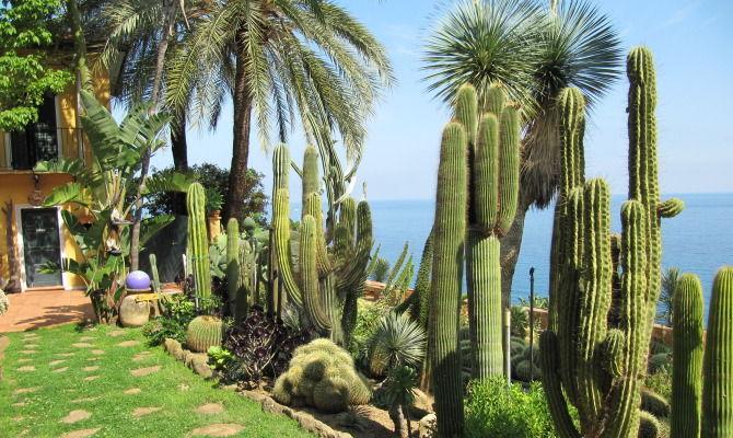 Bordighera il giardino dei cactus nato su uno scoglio