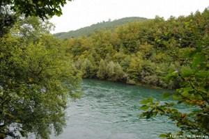 16 - Zlatibor e dintorni - Fiume Drina