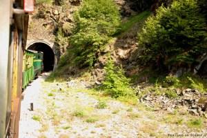 13 - Zlatibor e dintorni - Tunnel della Šarganska Osmica