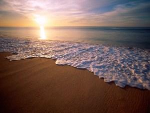 Mayor impulso al Turismo Médico en Baja California
