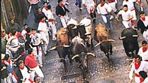 Navarra 3