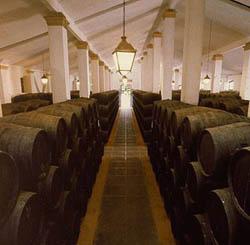 El triangulo del vino y Jerez 3