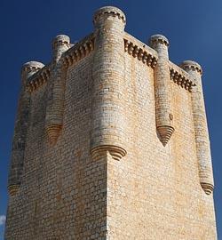 El Castillo de Torrelobaton 3