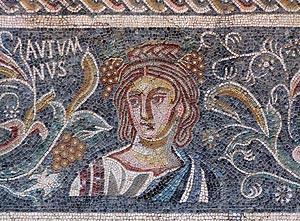 Museo de Arte Romano de Merida 12