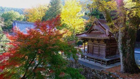 shikoku japon turismo religioso