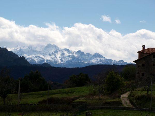 Picos de Europa desde Abéu