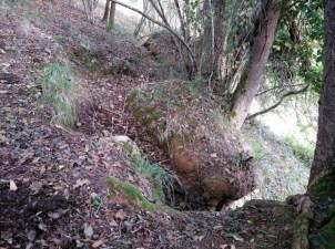 Trinchera Bosque Pontiga en Cangas de Onís