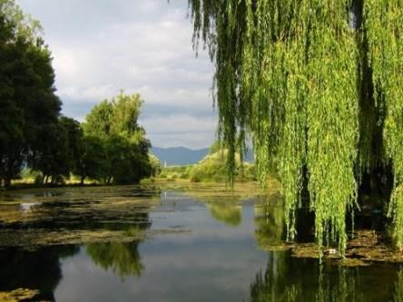 Lacul Teplita