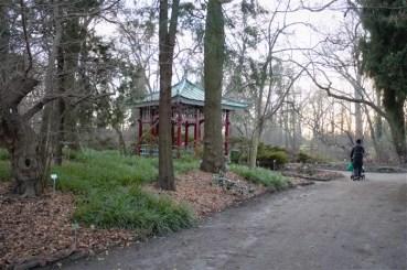 %name O Jardim Botânico de Berlim