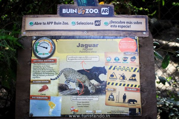 Turistando.in Chile Buin Zoo Santiago 009 600x400 O Zoológico de Buin (Buin Zoo), perto de Santiago do Chile