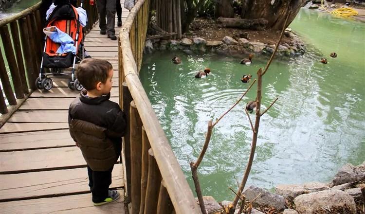 O Zoológico de Buin (Buin Zoo), perto de Santiago do Chile