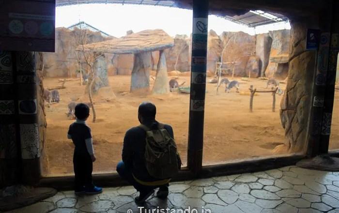 São Paulo com crianças: 12 lugares para levar os filhos nas férias