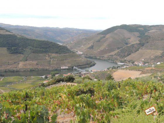 Bem vindos ao Vale do Douro