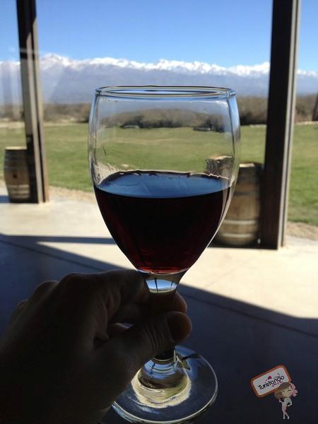 Roteiro Mendoza com dicas do que fazer na terra do vinho