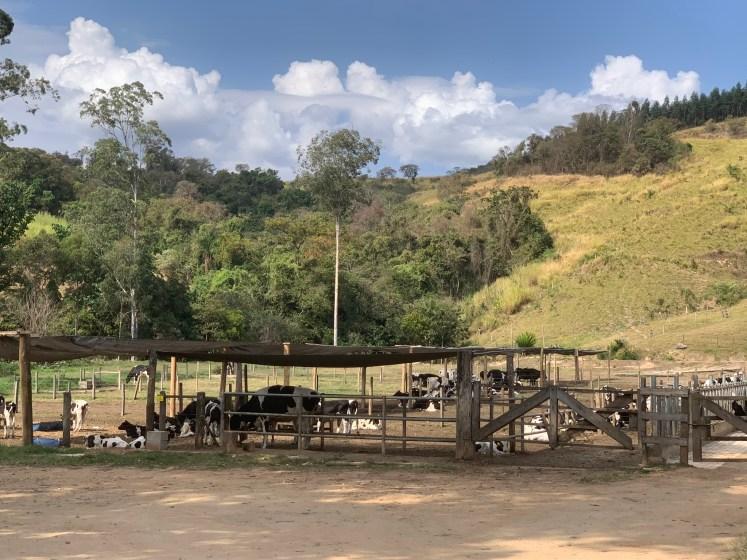 Fazenda Atalaia Amparo
