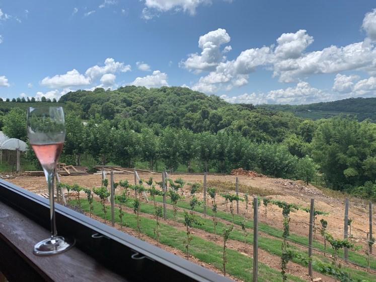 vinicolas do vale dos vinhedos