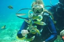 Fethiye Diving Tour