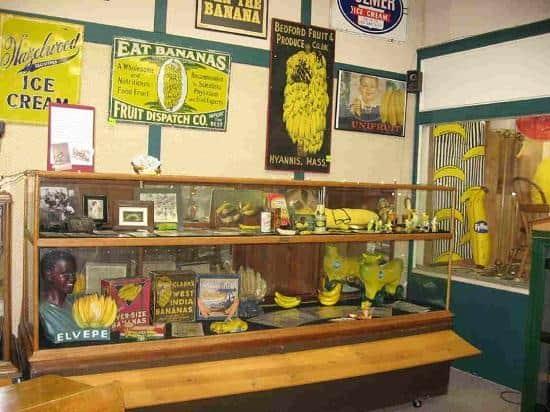 Museo Del Plátano