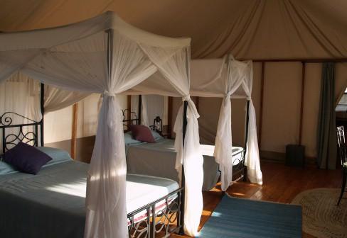 Four-Seasons-Serengeti-Tanzania