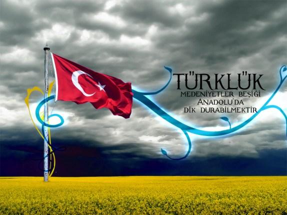 Turkluk-Nedir