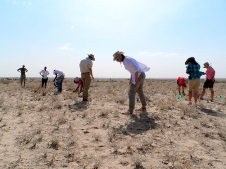 Students survey the area