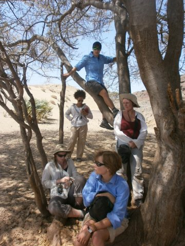 Students resting under the tree.