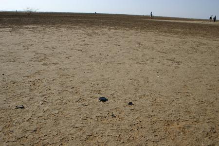 Surface of Aiyangiyang.