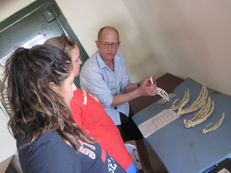 Dr. Matthew Skinner explains the type of hand bones to Page and Aileen.