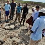 A Journey into Evolution, Solar Energy, & Paleontology