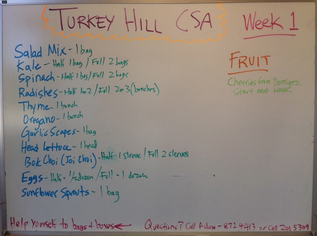 2011 CSA Newsletter, Week 2 – the lull before the storm