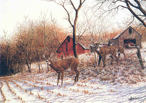Image Result For Deer Oil Painting Art