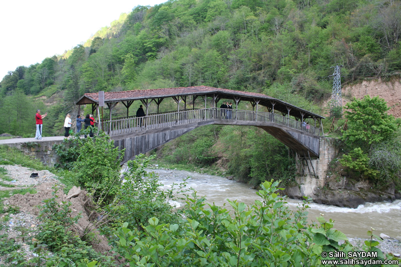 Trabzon Photo Galleries - Trabzon Photos, Trabzon Pictures