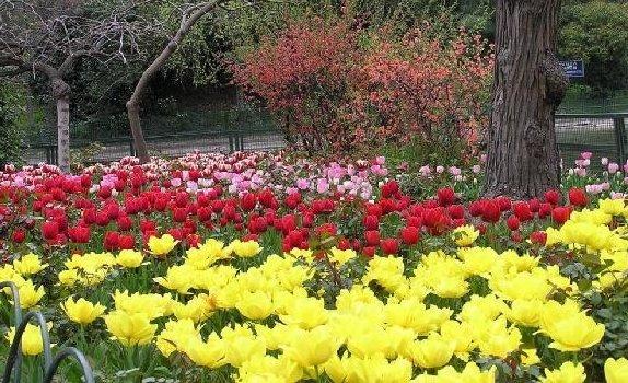 أهم حدائق مدينة اسطنبول