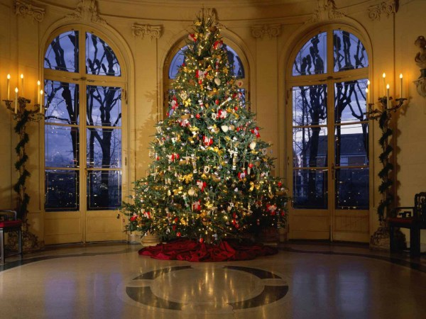 Large Decorated Christmas Tree